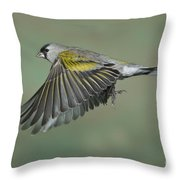 Lawrences Goldfinch Throw Pillow
