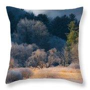 Layered Beauty Throw Pillow