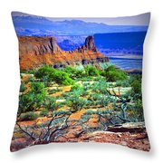 Layers Of Earth Throw Pillow