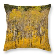 Layers Of Gold Throw Pillow