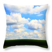 Layers Of Summer In Ohio Throw Pillow