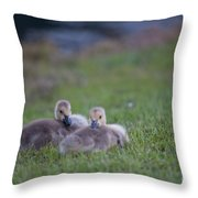 Laying Down Throw Pillow