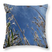 Laying In A Feild Looking Up Throw Pillow