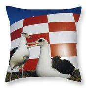 Laysan Albatross Pair Nesting Midway Throw Pillow