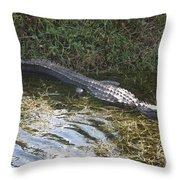 Lazy Alligator Throw Pillow