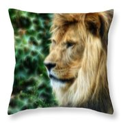 Lazy Boy Day Dream At The Buffalo Zoo Throw Pillow