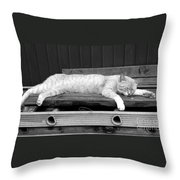 Lazy Cat Throw Pillow