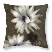 Lazy Daisies Throw Pillow by Bonnie Bruno