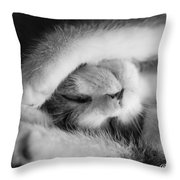 Lazy Day Bw Throw Pillow