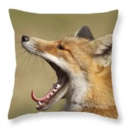 Lazy Fox Throw Pillow