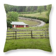 Lazy Hazy Summer Throw Pillow by Bill Wakeley