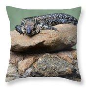 Lazy Lizard 2 Throw Pillow