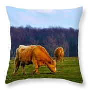Lazy Meadow Throw Pillow