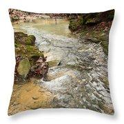 Lazy Mountain Stream Throw Pillow