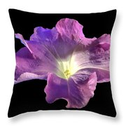 Lazy Petunia Throw Pillow
