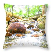 Lazy Rapids Open Throw Pillow