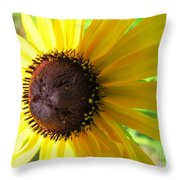 Lazy Susan Flower Variety Throw Pillow