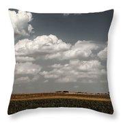 Lbj Ranch In Texas Throw Pillow