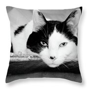 Le Cat Throw Pillow by Andee Design