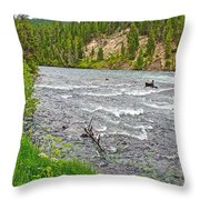 Le Hardy Rapids Of Yellowstone River In Yellowstone River In Yellowstone National Park-wyoming   Throw Pillow