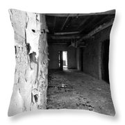 Lead Paint Throw Pillow