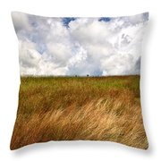 Leaden Clouds Over Field Throw Pillow