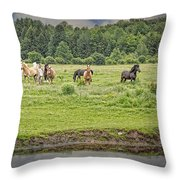 Leadership And Respect Throw Pillow