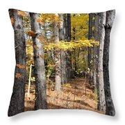 Leading To Autumn Throw Pillow