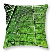 Leaf Abstract - Macro Photography Throw Pillow