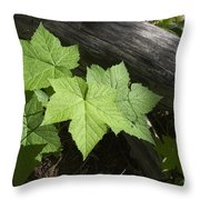 Leaf And Log Throw Pillow
