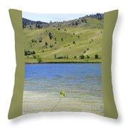 Leaf At Wonderland Lake Throw Pillow