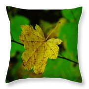 Leaf Caught On A Branch Throw Pillow