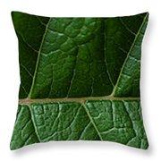 Leaf Close Up Throw Pillow