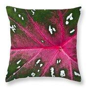 Leaf Detail Throw Pillow