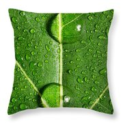 Leaf Dew Drop Number 10 Throw Pillow