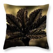 Leaf In A Special Light Throw Pillow