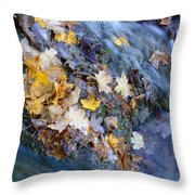 Leaf Island Throw Pillow