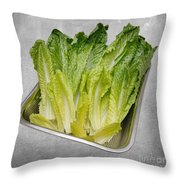 Leaf Lettuce Throw Pillow by Andee Design