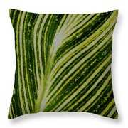 Leaf Lines Throw Pillow