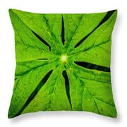 Leaf Macro Throw Pillow
