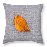 Leaf On Granite 1 Throw Pillow