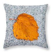 Leaf On Granite 10 - Square Throw Pillow