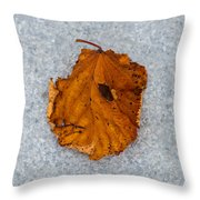 Leaf On Granite 11 - Square Throw Pillow
