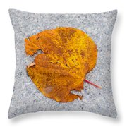 Leaf On Granite 12 - Square Throw Pillow