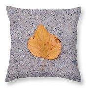 Leaf On Granite 2 - Square Throw Pillow