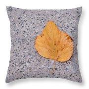 Leaf On Granite 2 Throw Pillow