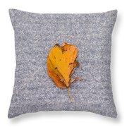 Leaf On Granite 3 - Square Throw Pillow