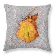 Leaf On Granite 4 - Square Throw Pillow
