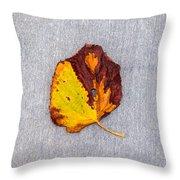 Leaf On Granite 5 - Square Throw Pillow