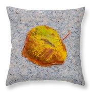 Leaf On Granite 6 - Square Throw Pillow